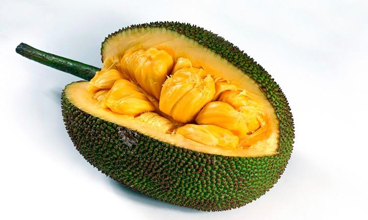 tendencias-actuales-gastronomia-2021-jackfruit