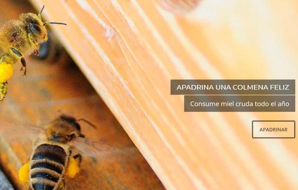 tendencias en alimentacion, el crowdfarming-abeja