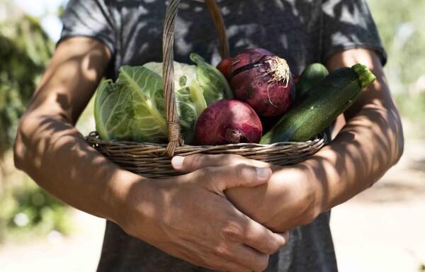 tendencias en alimentacion, el crowdfarming