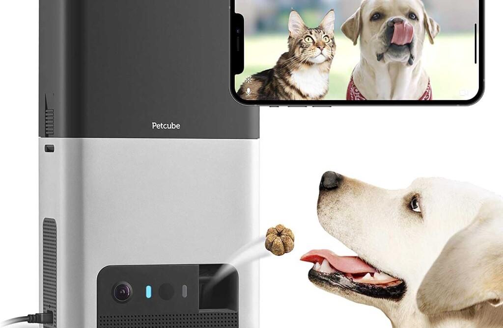 Tendencias para propietarios geek de mascotas-pet cube